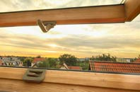 rated Tanlan roof window companies